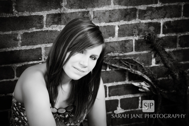 senior portraits, seniors outdoor, senior on location, wildflowers, sarah jane photography, decatur il portraits