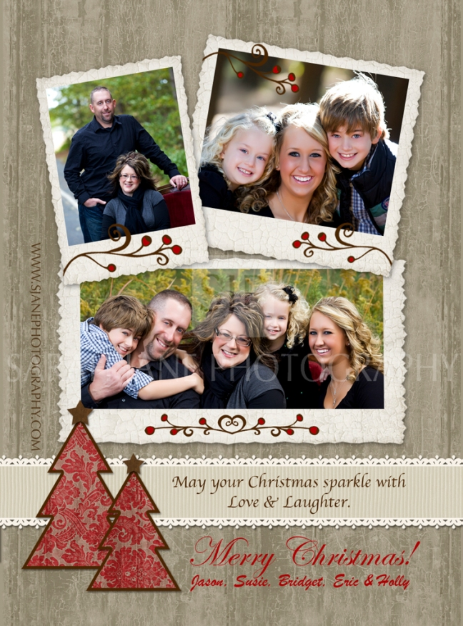 christmas cards, unique christmas cards, holiday card designs, decatur illinois, sarah jane photography