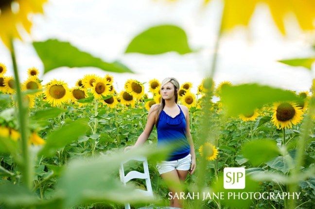 photo senior decatur il, senior photos, senior portraits, seniors, photographer decatur il, sarah jane photography, 2014 senior, maroa-forsyth high school, MFHS seniors, outdoor senior photos, senior poses, senior girls, studio portraits, studio photography